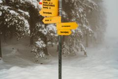 Alpenblick-31