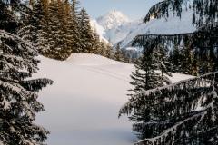 BerggasthausAlpenblick-39